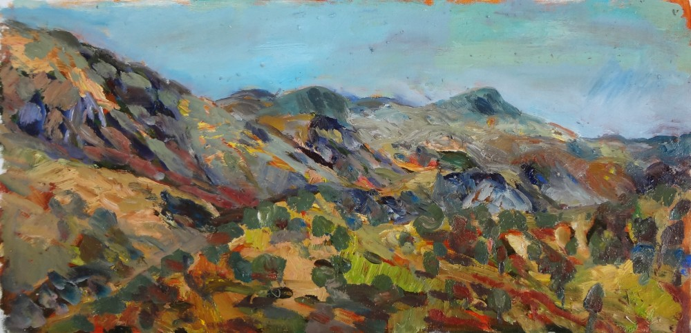Arkaroola Valley View Oil Sketch by